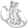 Italian Greyhound Rescue Foundation (IGRF) Selects Cause Rx's...