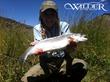 Big Trout on Rarick Creek