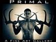 Emerging Artist Nicholas Freeman to Launch PRIMAL Fine Art Photo...