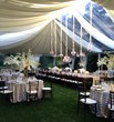 Clear & White Top Tent