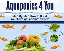 Aquaponics step by step program