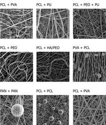 Composite nanofibres - SEM images