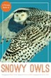 'A Picture Book of Snowy Owls' Combines Photography and Verse,...