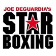 Joe DeGuardia's Star Boxing Year in Review 2013