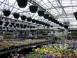 Gothic Arch Greenhouses Offers Greenhouses for All Seasons
