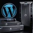 The Fastest Web Hosting for WordPress Named by WPMatter
