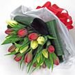 Flora tulip bouquet