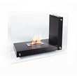 BioFlame allure bio ethanol ventless fireplace