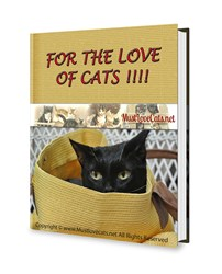 Mustlovecats.net Ebook