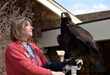 Assistant Curator Melissa Hill, pictured with golden eagle, Kateri