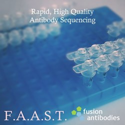 Fusion Antibodies F.A.A.S.T. Sequencing Service