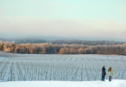 Snowshoeing in the Traverse City Wine Country
