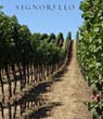 Napa Valley's Signorello Estate Gains Napa Green Certification for...