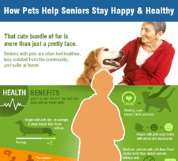 Infographic: How Pets Help Seniors Stay Happy & Healthy