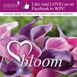 Blooming Love: $150 Valentine's Day Giveaway for Flower Bulbs from Longfield Gardens