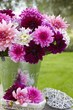 Win $150 towards Bulbs such as these Dahlias from Longfield Gardens