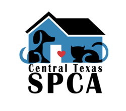 Central Texas SPCA, fundraiser, calendars, sponsorship, animal welfare, shelters