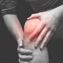 Fix My Knee Pain Review
