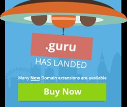 New GTLDs Have Landed