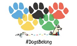 Tedd the Dog Apparel: Painted Paws for Sochi Dogs Campaign