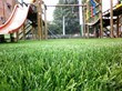 Act Global Issues Tips to Consider When Purchasing Synthetic Lawn Turf