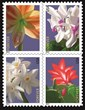 Come to the First Day Ceremony for the Winter Flowers Stamps, Friday, February 14, at Noon.