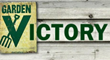 Victory Garden Connection Launches New Website for Community Garden...