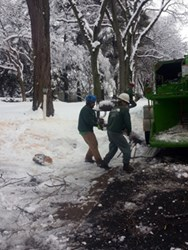 Giroud Tree and Lawn crew cleans up damage from last week's ice storm.  Safety tips help prepare Philadelphia homeowners for the Nor'Easter