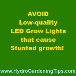 Best LED Grow Lights for Hydroponics