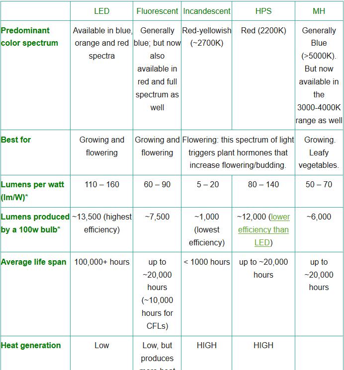 Light Comparison Hoyota