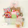 Baby Owl Baby Gift Basket