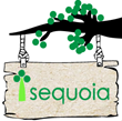 Sequoia Promotes Stephen Mouring to CTO