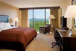Roanoke Hotel Guestroom