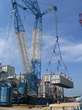 CICB Announces Upcoming OSHA Compliant Crane & Rigging Inspector...