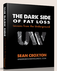 Sean Croxton The Dark Side of Fat Loss ebook review