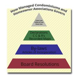 Acri Explains Association Governing Hierarchy