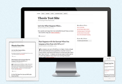 DIYthemes.com Thesis Theme in Action