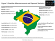 Brazilian Payments Market Is Expected to Meet Lofty Potential
