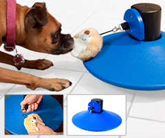 PhysiPet New Pet Product Invention by NFL Player
