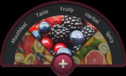 Wine with Friends - Flavor Wheel