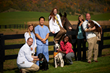 LMU-College of Veterinary Medicine to Welcome Inaugural Class