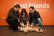http://bfla.bestfriends.org/