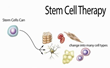 Dr. Jeffrey Adler Presents on Use of Stem Cell Therapy at Graham...