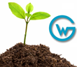 GlobalNow Retains Witmer Group for Marketing of Their Software Development and Testing Services