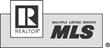 MLS MRIS logo blk