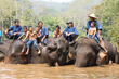 Thai Children Learn About Elephant Conservation