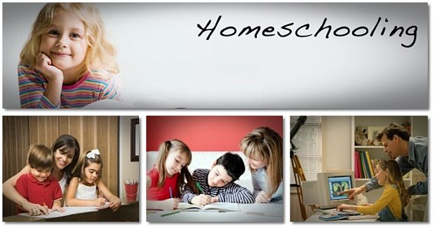essays on cons of homeschooling Report abuse home college guide college essays homeschooling: an alternative choice for education homeschooling: an alternative choice for education may 21.