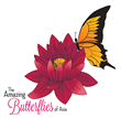 Butterflies in the Garden, Largest Exhibit of Live Butterflies in...