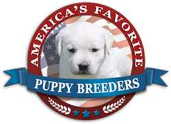 America's Favorite Puppy Breeders