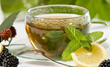 """Benefits of Peppermint Oil,"" a New Article on Vkool.Com, Reveals..."